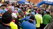 Bieg dębowy - biegnący zawodnicy